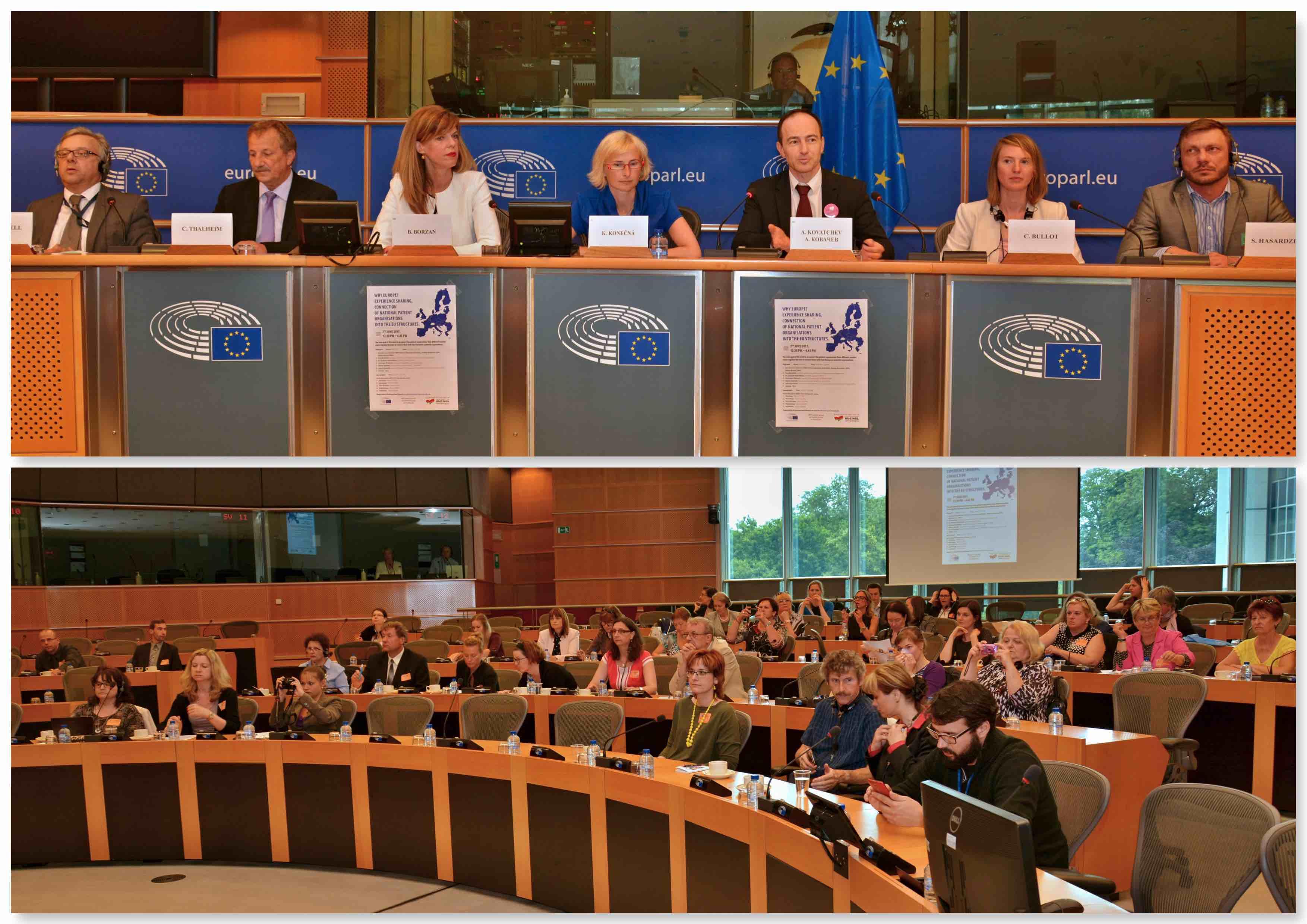Pacientské organizace v Bruselu